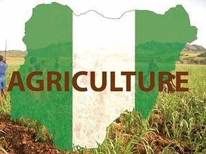 Nogeria Agri Sector_edited_edited_edited.jpg