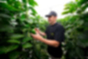 Photographer location business commercial Reading Berkshire pepper grower
