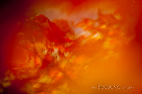 Nature images fine art splashbacks modern abstract images contemporary