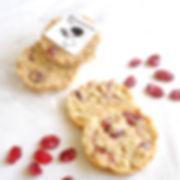 khanam | オートミールとクランベリーのクッキー