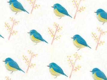 【trim】松井有希個展「Bird」のお知らせ