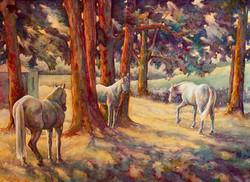 Ryan-Robyn-LocustShade-Watercolor