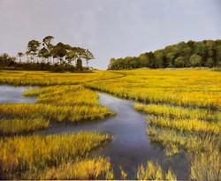 Moffat, Sarita-Maryland Wetlands