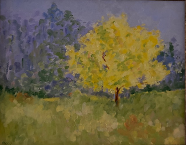 Suzan Macy-Yellow Tree