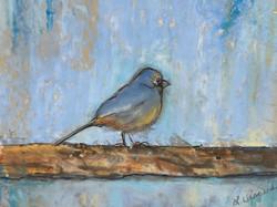 Viscardi, Linda-Birdie #1