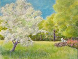 Macy, Suzan-Spring Stroll