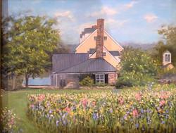 Moffat_ Sarita_Innisfree Farm Wildflower