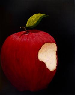 Petrecca, Regina-Adam's Apple-16x20-acrylic on canvas