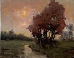 Hopkins, Laura-October Sunshine