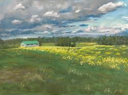 Remington, Justine-wildflowers--storm-cl