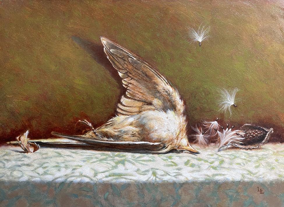 Liberace Lina Cuckoo with Milkweed oil