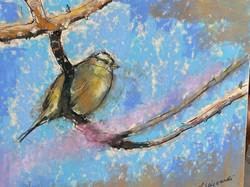 Viscardi, Linda-Birdie #2
