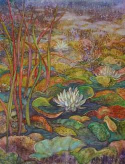 Ryan, Robyn-Pond - Water Lillies Web