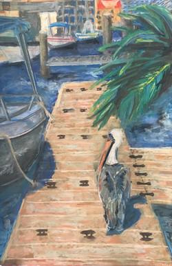 Wiese, Allison-Dock Pelican