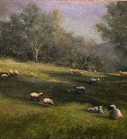 Sheep In Springtime Pasture Peggy Weed.j