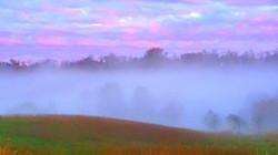Light of Dawn, Susan Agnew