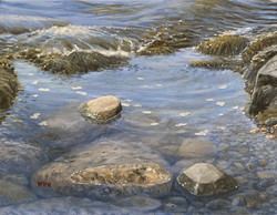 Walsh, William-Tide Pool