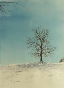 Baker, Michelle-One Winter Day