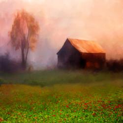 Breen, Susan-barn in mist