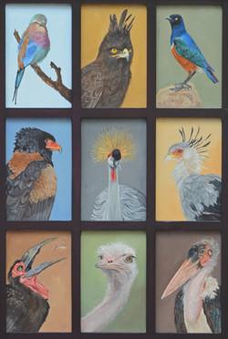 Thompson,Dana-oiliconicbirdsofeastafrica