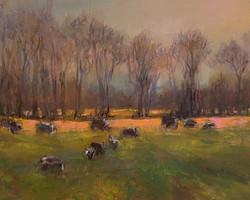 Palmer-Rachel Garcia-When the Cows Come Home