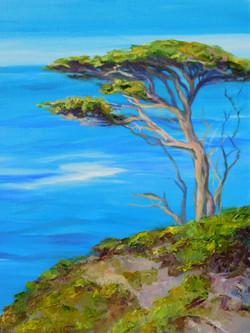 Block, Anne Marshall-Cypress Point UC