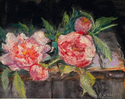 Wallace, Ann-Spring's Pink Lace