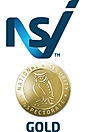 NSI Gold.jpg
