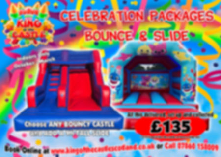 Bouncy Castle and Inflatable Slide Party Hire