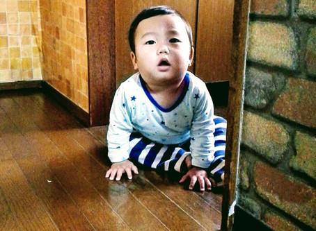 飛騨からの電話 A phone call from Hida.