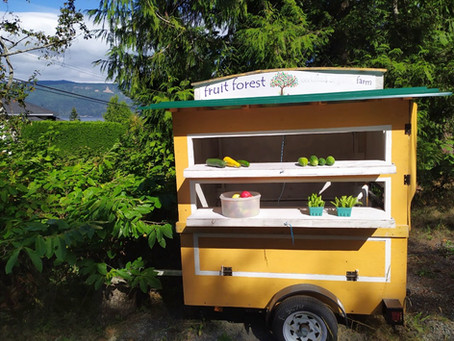 What's Fresh at the Farm Stand This Week? September 25