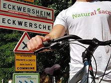 Livraison à Eckwersheim
