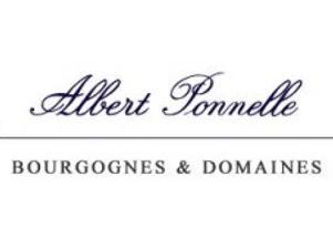 Albert 2.jpg