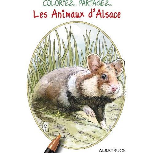 Pochette de coloriage animaux Alsace