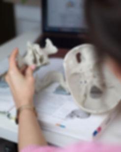 Myślicie, że anatomia GiS to dobra forma