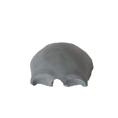 Kość Czołowa (model anatomiczny)