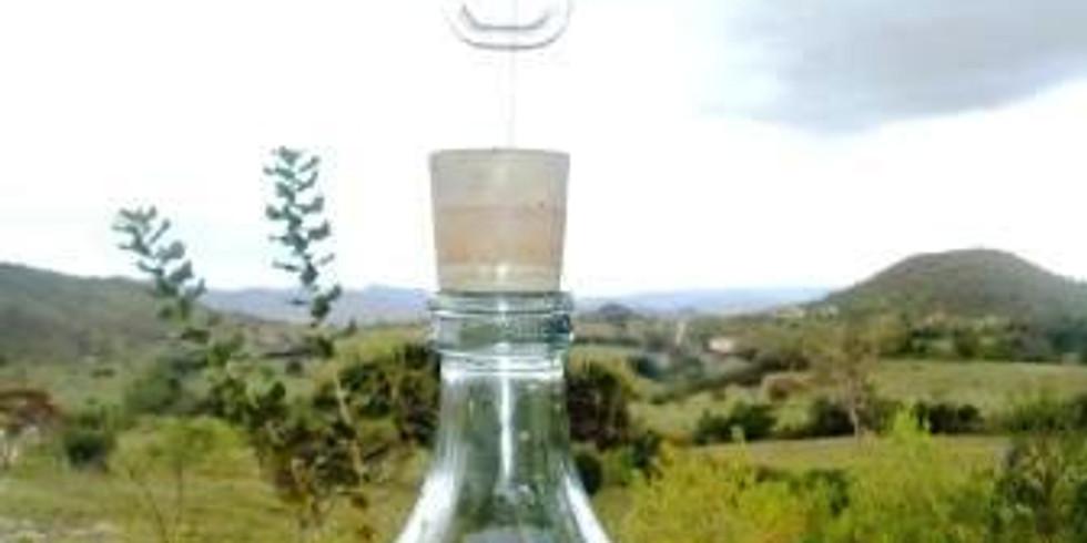 Espagiria - Nível I - Módulo II