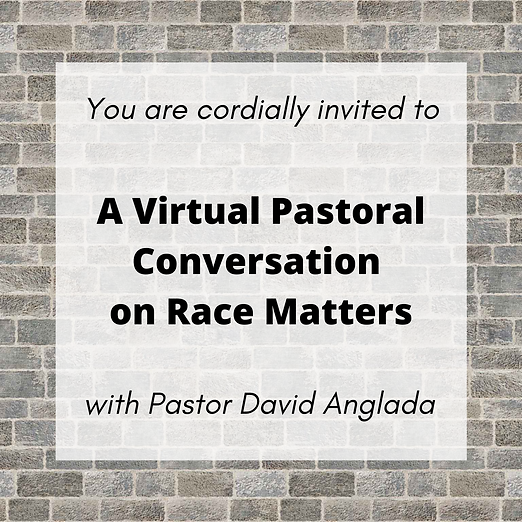 A Virtual Pastoral Conversation on Race