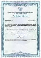 Лицензия ВВТ.jpg