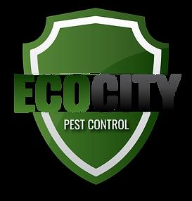 EcoCity.png