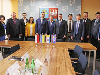 Voltage Group participated in business meetings of the delegation of Vinnitsa region in Poland