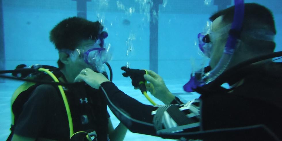 Cours de chef de plongée - Niveau 4