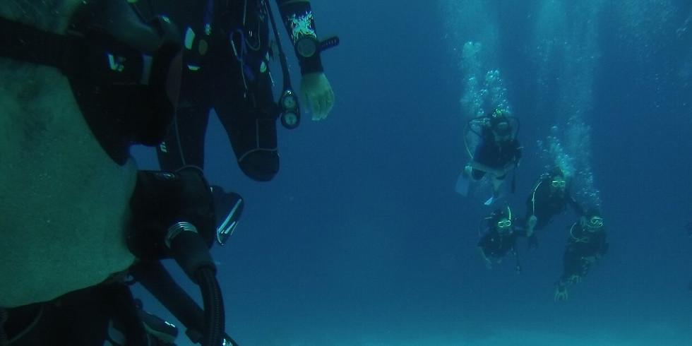 Cours de plongeur autonome - Niveau 1