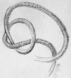 Etude au crayon graphite Cordon et noeud