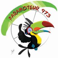 Paramoteur 973