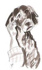 Crobar à l'encre de chine Expression chien