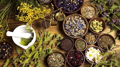 Herbal Consult