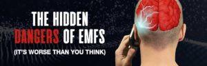 EMF-pompa-article-banner-300x96.jpg