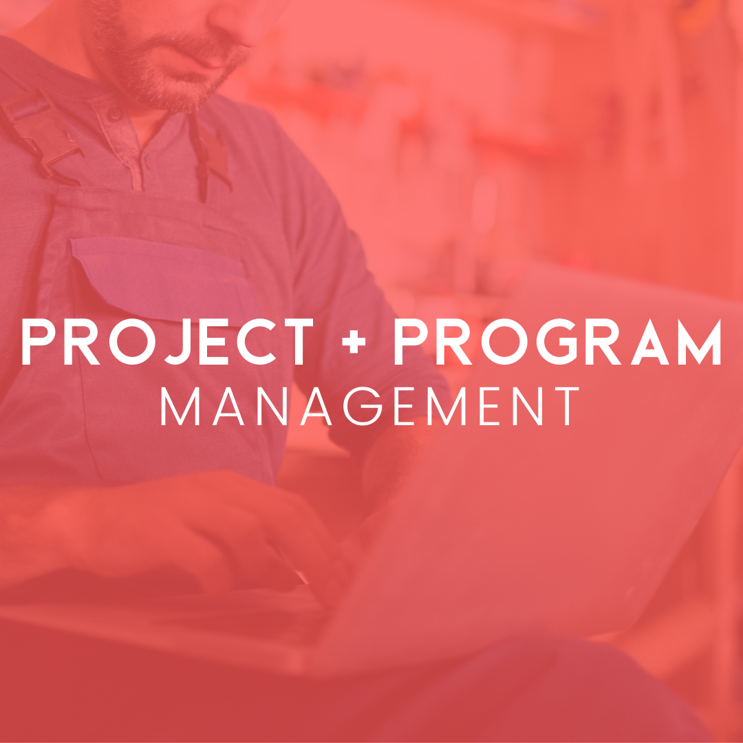 Project Mgmt