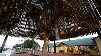 Tree of Knowledge 1.jpg